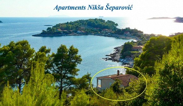 Apartments Niksa - house location